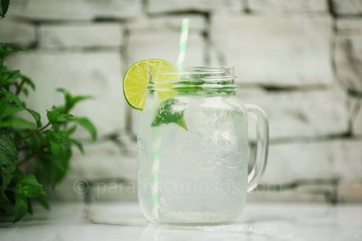 Ingredientes para refresco de mojito 1