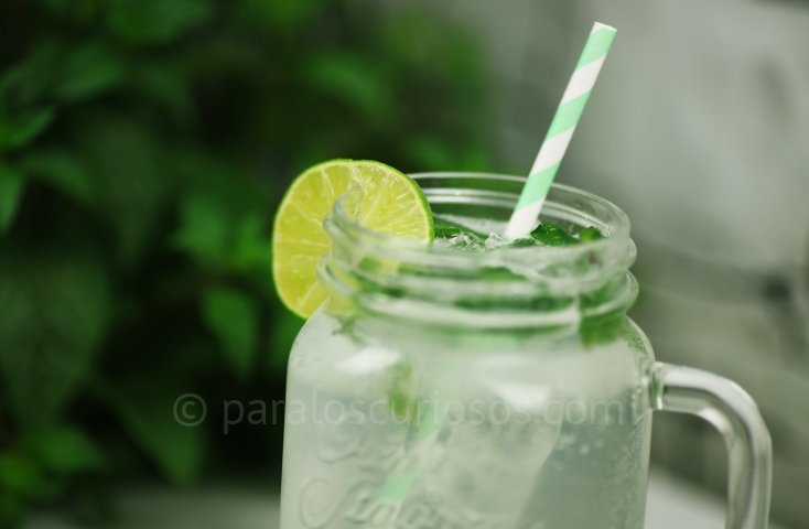 Ingredientes para refresco de mojito 6